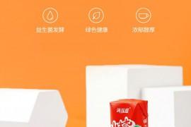 满垛鲜 山楂果汁饮料 开胃植物益生菌发酵果汁山楂果饮 1箱(共10罐)