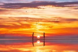 你看过日照的海吗,去看看吧——超干货攻略