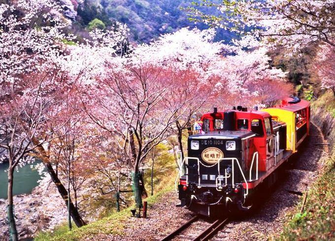 岚山风景区旅游